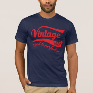 Camiseta vintage 1973 envelhecido ao presente de