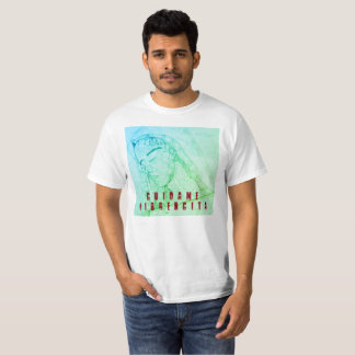 Camiseta Virgencita
