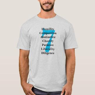 Camiseta Virtudes e pecados