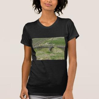 Camiseta Vista cénico do montanhês do rolamento com
