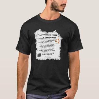 Camiseta Você sabe que você é um indeciso quando…