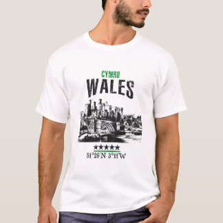 Camiseta Wales