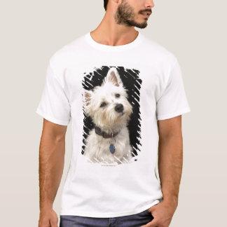 Camiseta Westie (terrier ocidental das montanhas) com colar