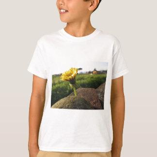 Camiseta Wildflower amarelo que cresce em pedras no por do