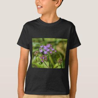 Camiseta Wildflowers roxos do Ageratum