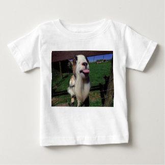 Camisetas engraçadas insolentes da cabra 6 meses a