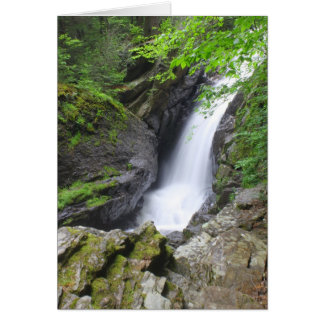 Campbell cai cachoeira de Berkshires do Cartão Comemorativo