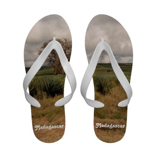 Campo de Madagascar Flip-flop