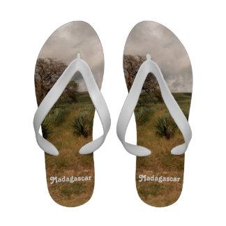 Campo de Madagascar Sandálias De Praia