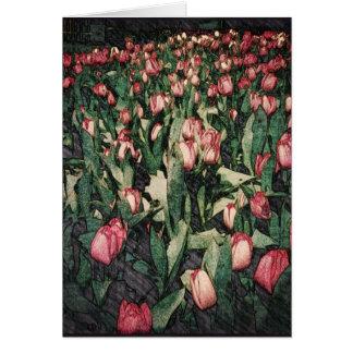 Campo do cartão cor-de-rosa de Balnk das tulipas