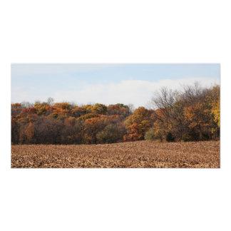 Campo do outono impressão de foto