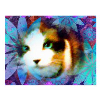 campo do sapato de neve do gatinho das flores cartão postal