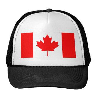 Canadá - bandeira canadense bone