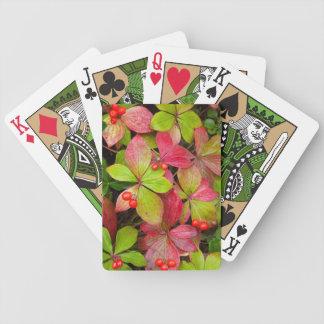Canadá, Columbia Britânica, montagem Robson Baralho Para Poker