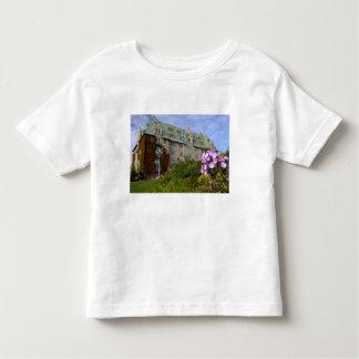 Canadá, Quebeque. Região de Charlevoix, 2 Camiseta