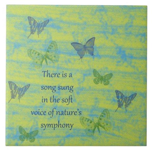 Canção das borboletas azulejos