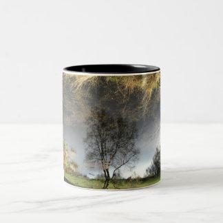 Caneca bonita da árvore da fotografia da reflexão