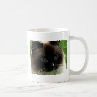 Caneca bonita do gato de Ragdoll