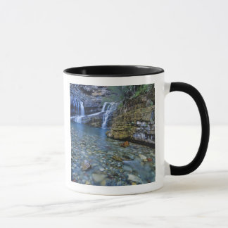 Caneca Cameron cai no parque nacional dos lagos Waterton
