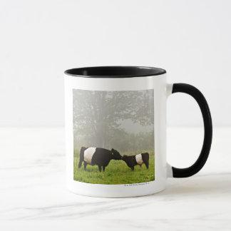 Caneca Cena enevoada da vaca cercada de Galloway que sere