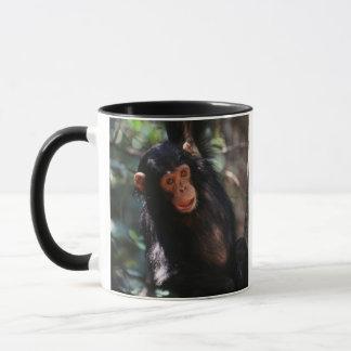 Caneca Chimpanzé novo que pendura na floresta