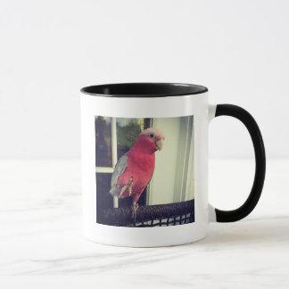 Caneca cor-de-rosa do papagaio