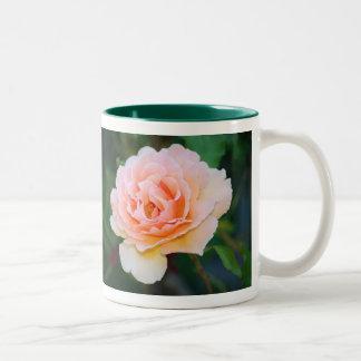 Caneca cor-de-rosa perfeita da imagem