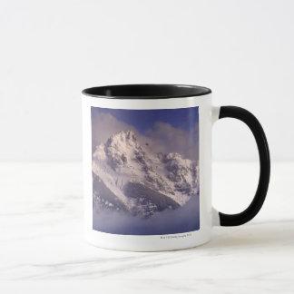 Caneca Cordilheira de Denali, Alaska