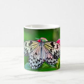 Caneca da foto da natureza da borboleta