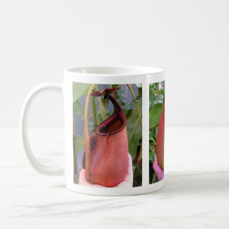 Caneca da foto do bicalcarata do Nepenthes (3