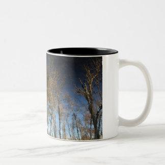 Caneca da reflexão do pinheiro
