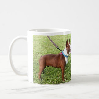 Caneca de Brown Boston Terrier