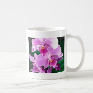Caneca De Café A orquídea floresce close up no rosa