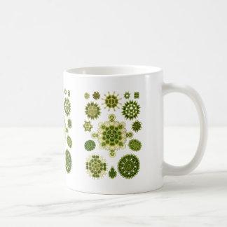 Caneca De Café Algas verdes