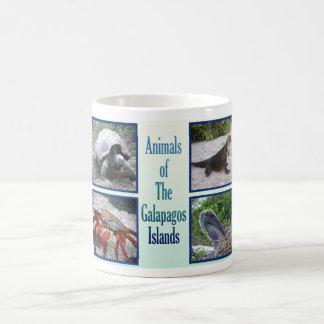 Caneca De Café Animais das Ilhas Galápagos