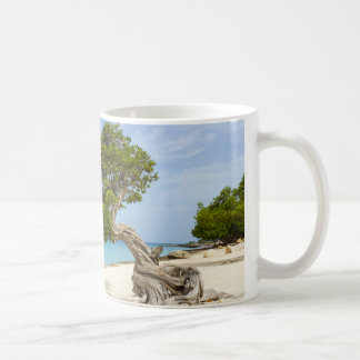 Caneca De Café Árvore de Divi Divi na ilha das Caraíbas de Aruba
