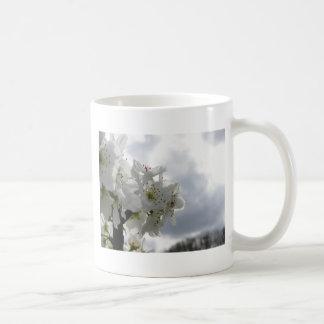Caneca De Café Árvore de pera de florescência contra o céu