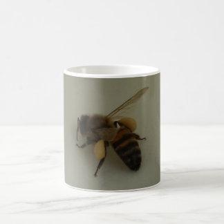 Caneca de café branco da abelha do mel