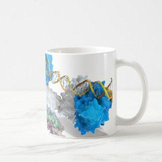 Caneca De Café c-Myc e entalhe que ligam o ADN