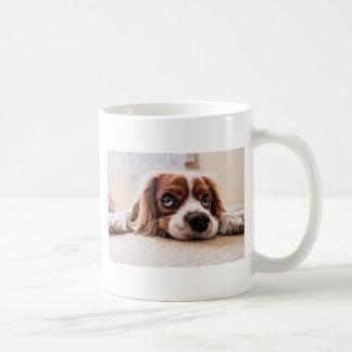 Caneca De Café Cão canino triste