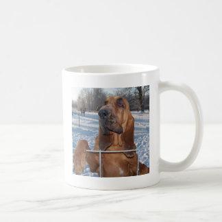 Caneca De Café Cara do Bloodhound