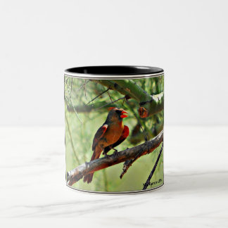 Caneca de café cardinal fêmea
