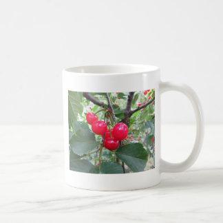 Caneca De Café Cerejas vermelhas de Montmorency na árvore no