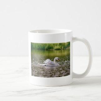 Caneca De Café Cisne branca em um lago