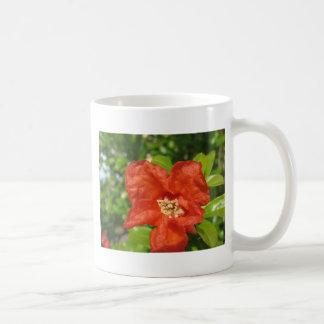 Caneca De Café Close up da flor vermelha da romã