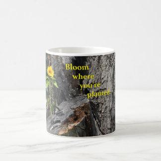 caneca de café com crescimento de flor fora da