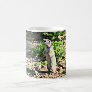 Caneca De Café Copo de café do perfil do esquilo à terra/caneca
