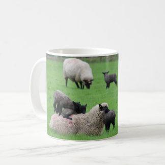 Caneca De Café Cordeiro e carneiros do primavera