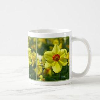 Caneca De Café Daffodils amarelos alaranjado 02.1.2.g