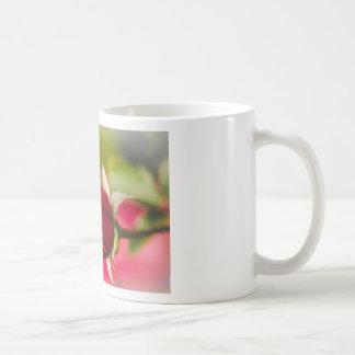 Caneca De Café Design ascendente próximo da rosa vermelha